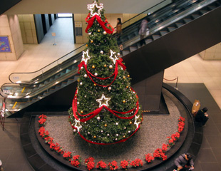 ChristmasTree2005.jpg