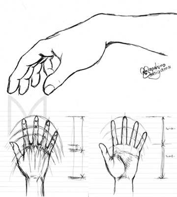Sketch_hand_06s.jpg