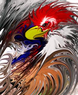 eagleCock03.jpg