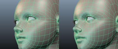 polygonfaceModel_01.jpg